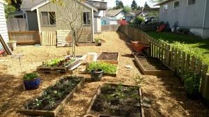 new yard