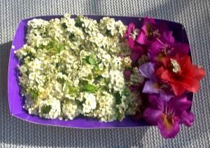 Nora's Flowers