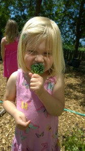 audrey broccoli